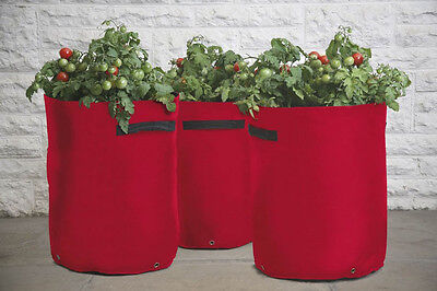 2 Haxnicks tomato planters growbags 3-cane support pockets red