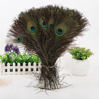 10-30PCS New Real Natural Peacock Tail Eyes Feathers 8-12 Inches/about 23-30CM
