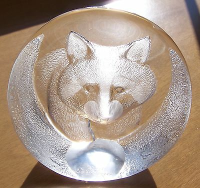 Mats Jonasson Raccoon 3334 Lead Crystal Glass Paperweight Made In Sweden
