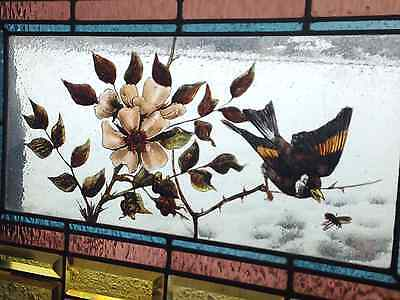 Rare Antique Stained Glass Window hand painted c.1890 Bird, branch, bee