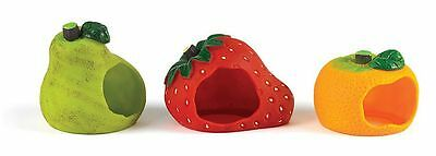 Fruity House Hide-Away Den for Gerbils Mice Hamsters
