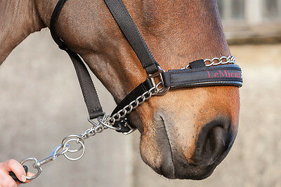 LeMieux CONTROLLER Chain HEADCOLLAR Pro-Safe Strong Black Nylon Pony/Cob/Full/XF