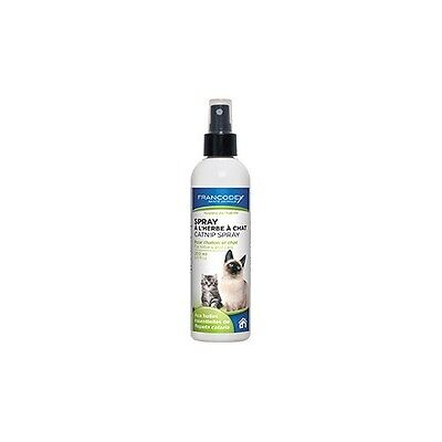 Spray attractif pour chaton et chat