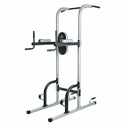 Gold's Gym XR 10.9 Power Tower  Total Body Fat Burner Workout