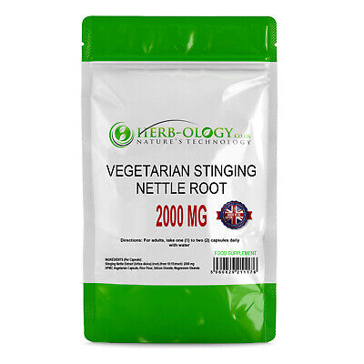 Stinging Nettle Root 500 MG x100 Capsules  Urinary & Prostate Support Swanson