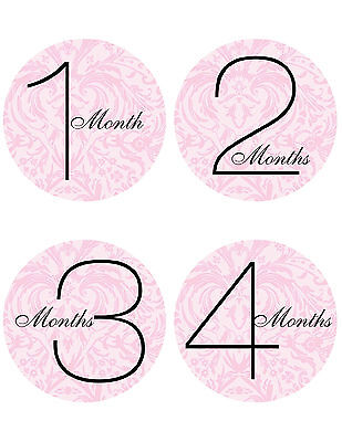 Baby Girl Monthly Stickers NEW Just Born+1month-1 Year Black/Pink Flowers Damask