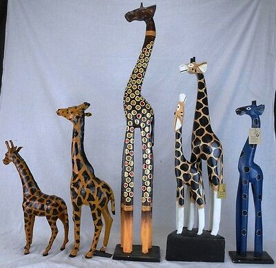 Lot of Giraffes from Around the World