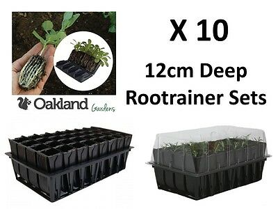1X Haxnicks Deep Rootrainer Set Root Trainer Books Cells Plug Plant Seed x50