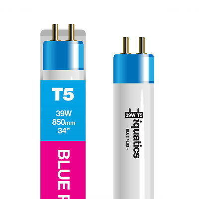 3 x iQuatics 39w T5 Blue Plus  - Fluorescent  *Marine* Colour enhancing Spectrum