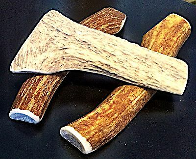 1 Medium Elk Split Antler Dog Chew..Free Shipping...100% Natural And Healthy