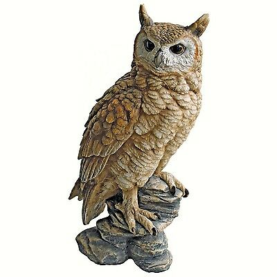 Design Toscano by Blagdon - Perching Forest Owl Statue Interpet