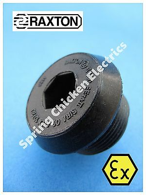RAXTON EExe 25MM BLANKING/STOPPING PLUG