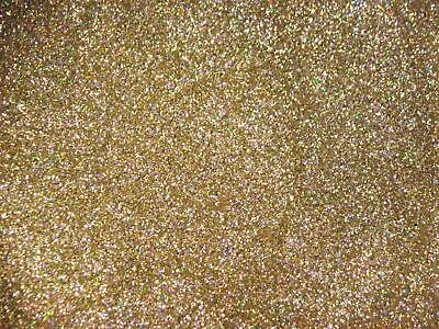 Metallic Polyester Cut Custom Car Bike Paint HOLOGRAPHIC GOLD Metal Flake 25g