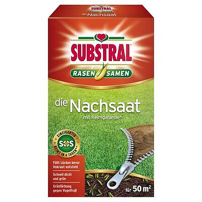 Substral Lawn Seed The Reseeding 1 Kg - Seeds Lawn Lawn Seeds Seed Mix