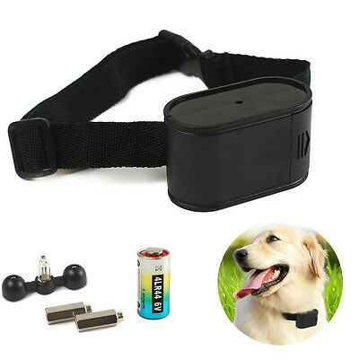 Dog Hidden Electronic Fence Fencing Training System In-ground Electric Collar AU