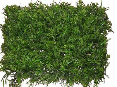 Large Artificial Vivarium Plant,Large Leaved Ivy On Trellis, Vivarium Background
