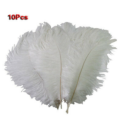 12 Kinds of Color New Natural 10-12 Inch Ostrich Feathers Decorations LW