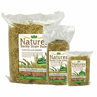 Natures Pond Barley Straw Bale Natural Crystal Clear Water Remove Algae Koi