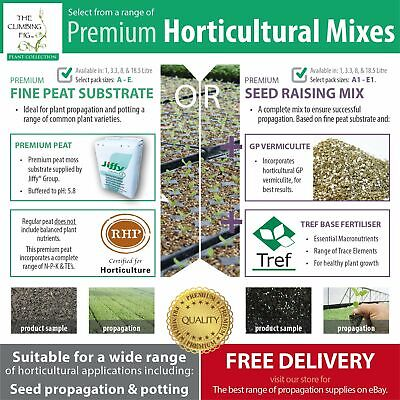 Propagation Mix Range | Fine Peat | Seed Raising Mix with vermiculite | Seedling