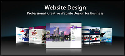 Professional Custom Web site design + Domain + Hosting with Unlimited featured