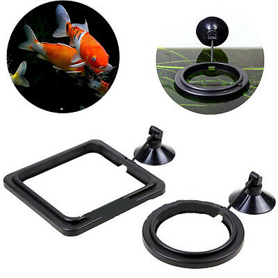 Feeding Ring Aquarium Fish Tank Station Floating Food Tary Feeder Square/Circle