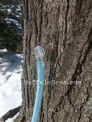 "6 Maple Taps/spiles & 24"" Hose  5/16"" Tree Saver sap syrup Free Ship. to CANADA"
