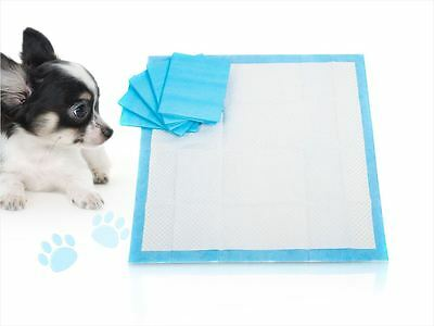 New Dog Puppy House Large Absorbent Training Trainer Pads Toilet Wee 60 X 40Cm