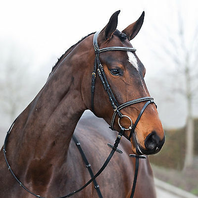 CONSTANCE FLASH BRIDLE horse pony cob sizes + free webbed reins black or brown