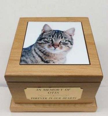 Beautiful Red Alder Cat Pet Urn with Custom Tile Photo & Engraved Brass Tag