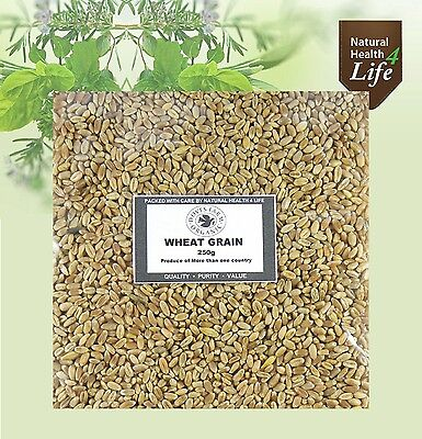 Organic Wheat Grain Berries Wheat Grass Juicing Weights up to 25kg Post Free