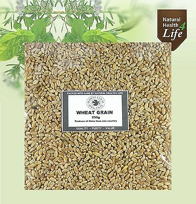 Organic Wheat Grain/Berries - Wheat Grass Juicing *Weights up to 25kg* Post Free