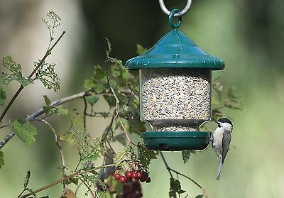 CLINGERS ONLY SMALL BIRD FEEDER Jacobi Jayne no Pigeons | FREE Fast Delivery!