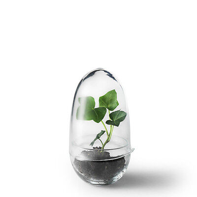 Grow Mini-Gewächshaus Design House Stockholm