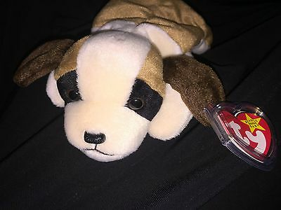 "All Collectors RARE *TY Beanie Babies ""BERNIE"" Dog ERROR PVC China Canada TAG"