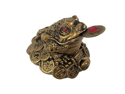 Three Legged Wealth Toad Coin Money Frog Gold Feng Shui