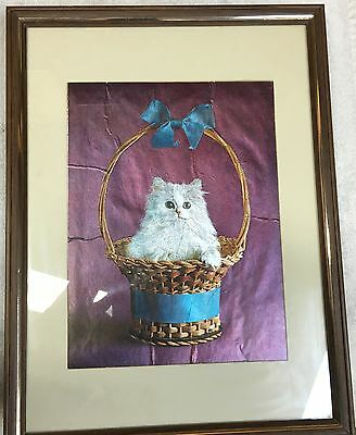 Vintage Framed White Kitten Picture