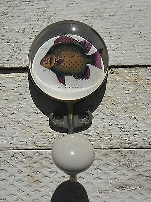 Brass with Glass Inlay Hook – Fish - SET OF TWO