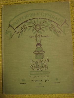 Vintage 1933 Original WELSH CHILDREN ILLUSTRATED Textbook 112 pgs HC 211