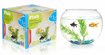 2.8 Litre Glass Fish Bowl Kit With Accessories Starter Aquarium Goldfish Tank