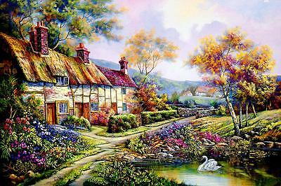 Acrylic Paint By Numbers Kit Canvas Swan Country Farmhouse 50*40cm S5 8190