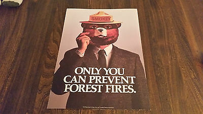 Smokey Bear Poster Only You Can Prevent Forest Fires , Government Issue