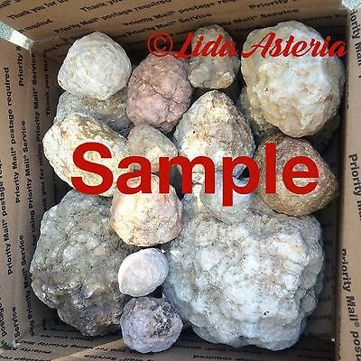 Unopened Geodes Mixed Variety Large Box Whole Natural Quartz Kentucky Crystal