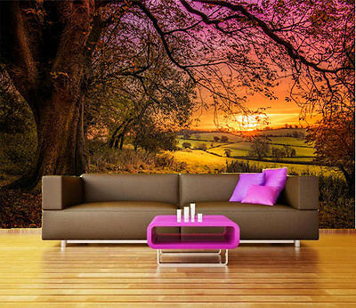 Bright Sunset Trees Field 3D Full Wall Mural Photo Wallpaper Printed Home Decor