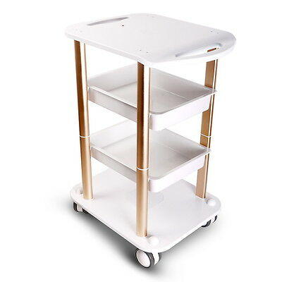 Cavitation Machine Stand Rolling Cart Two Shelf ABS Aluminum Beauty SPA Trolley