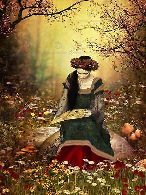 Woman Reading Forest Fairytale Photo Art Print Poster Picture Bmp2078A