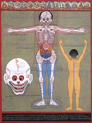 Painting Weird Ancient Asian Anatomy Scientific Strange Art Print Poster Cc1025