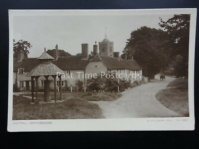 Hertfordshire WESTMILL nr Buntingford showing Village Water Pump - Old Postcard