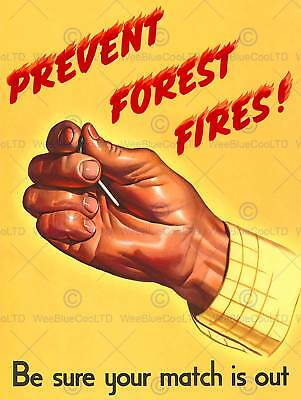 Advert 1944 Prevent Forest Fires Safety New Fine Art Print Poster Cc2667