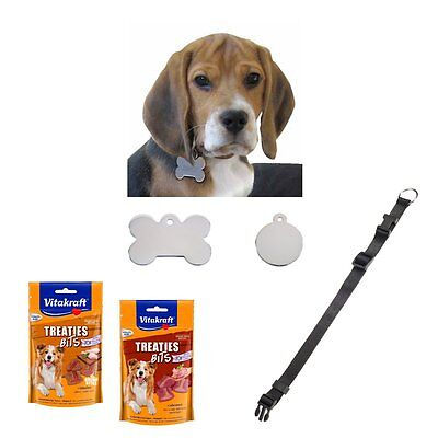 Gift Set for dogs - address tag with engraving + Collar + Dog snacks