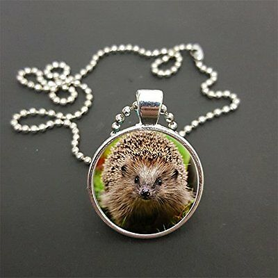 """Hedgehog Pendant On 18"""" (Any Size) Silver Coloured Ball Chain Necklace Gift N83"""